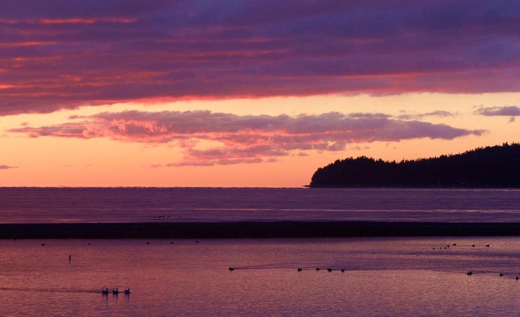 Sunrise, Oyster River Estuary. charles brandt photo