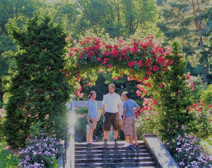 Portland Rose Garden - bruce witzel photo