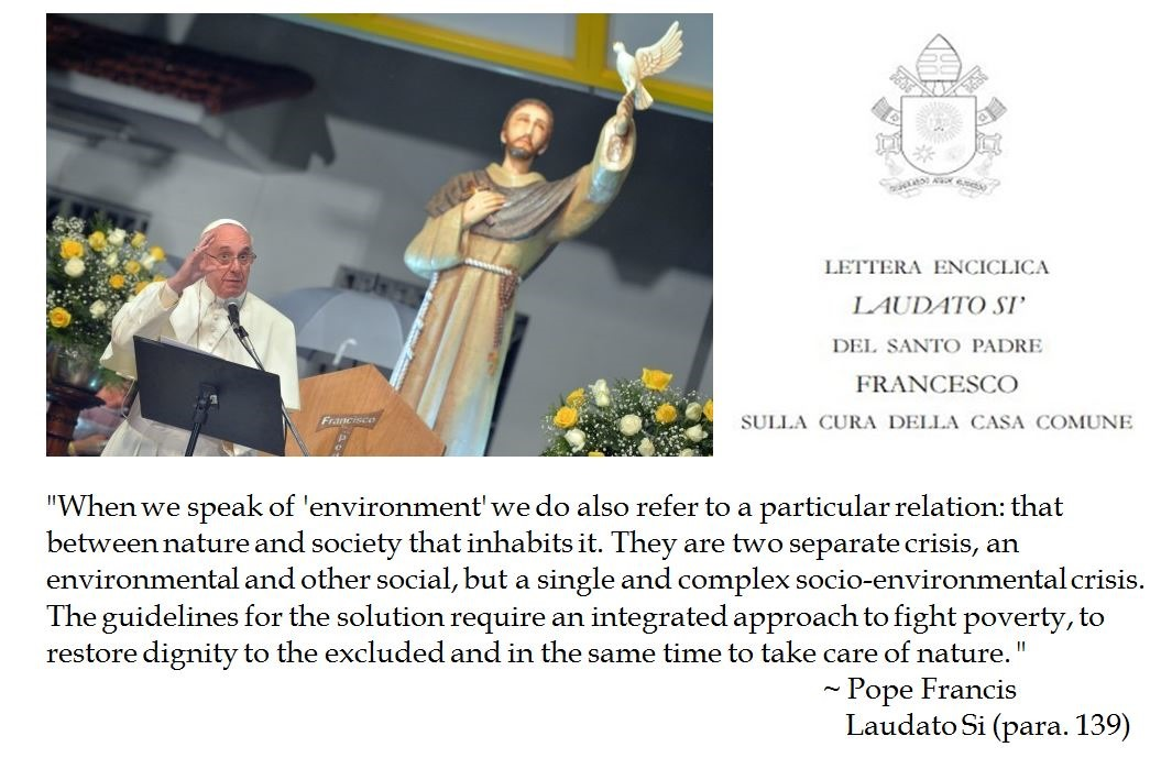 150617b-pope-francis
