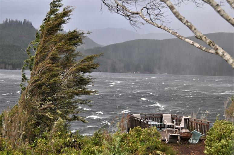 Northern Vancouver Island Storm (2) Dec. 9, 2014 - bruce witzel