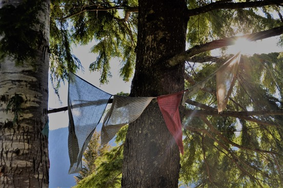 Prayer flags (2) - bruce witzel photo