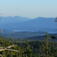 DENSE FORESTS of CANADA'S WEST COAST