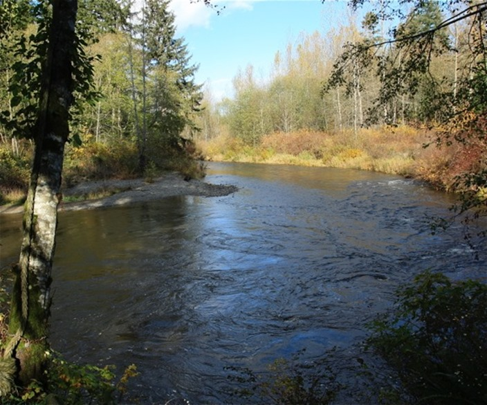 A comox valley river - charles brandt photo