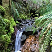 ODE TO A LITTLE STREAM - Off Grid Power, Part 2: MICRO-HYDRO
