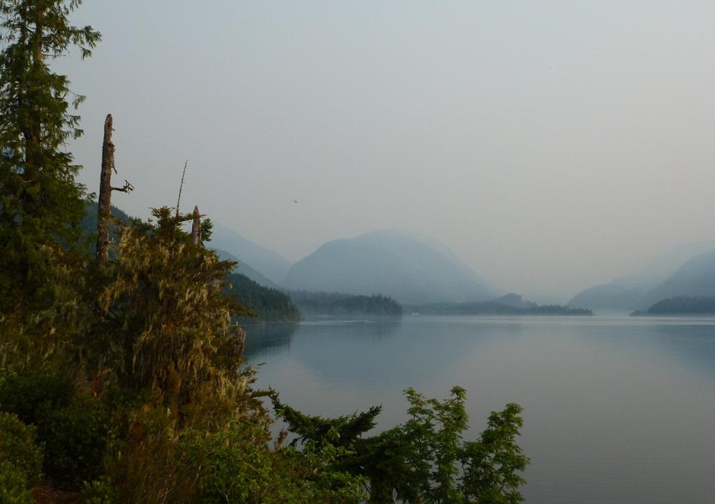 Smoky skies  - fran guenette photo