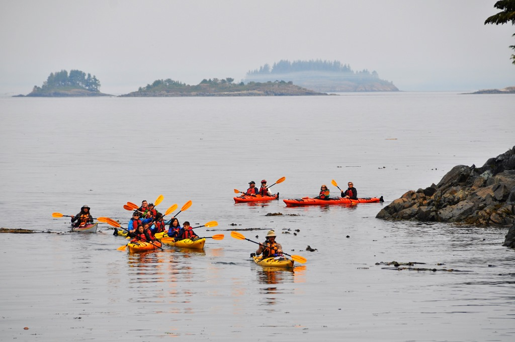 Telegraph Cove Kayakers, Aug. 5, 2017 - bruce witzel photo