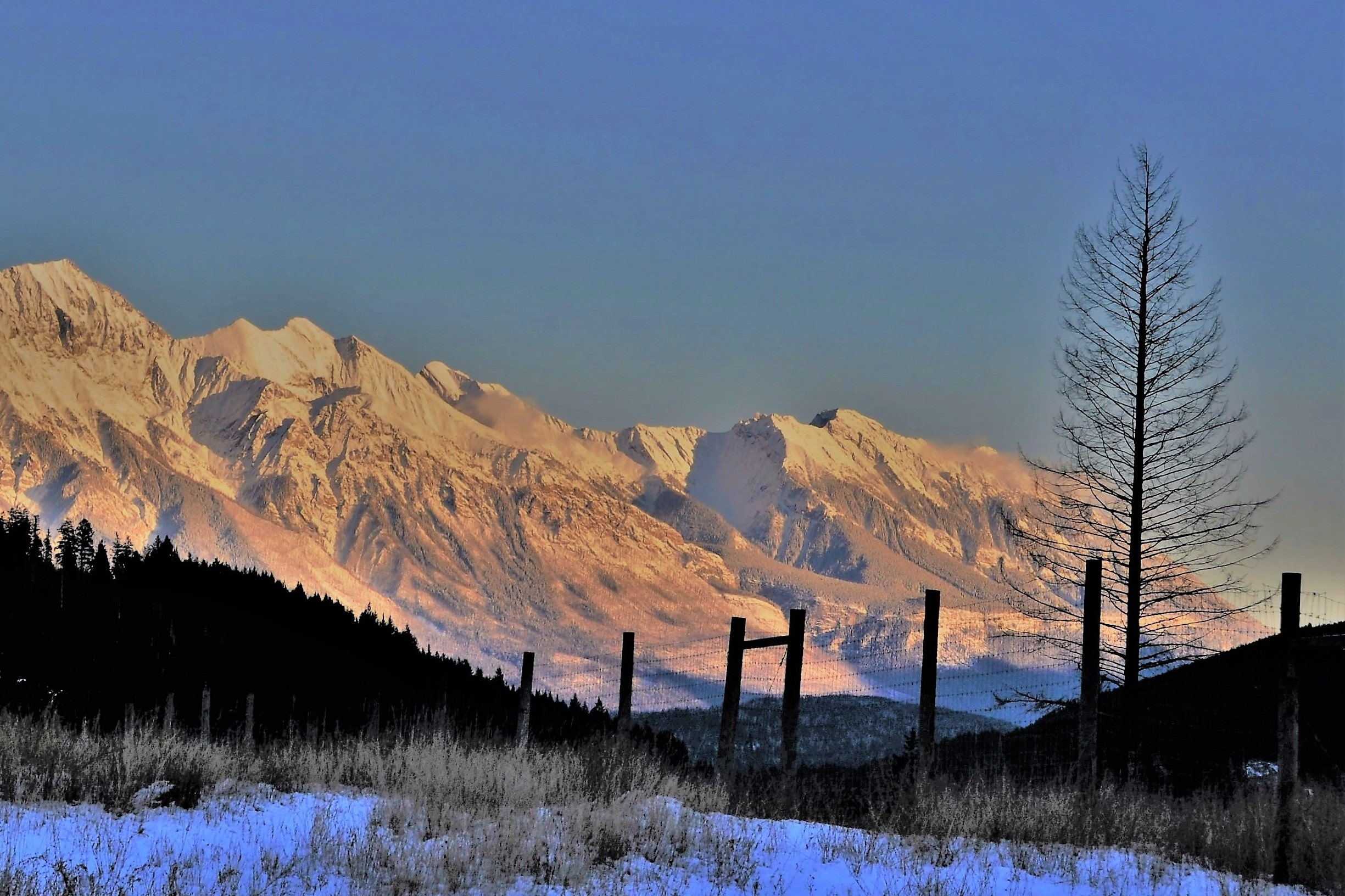 Fence and Rocky Mntns. near Trans-Canada Highway (2), Banff Alberta Nov. 6-2017  - bruce witzel photo
