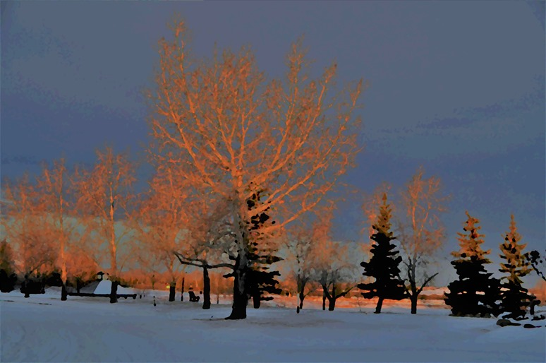 Morning Sun (oil painting3) in High River Alberta - bruce witzel photo