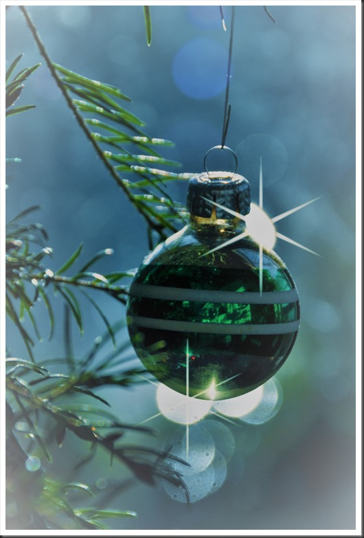 Glass Christmas Oranament - bruce witel photo