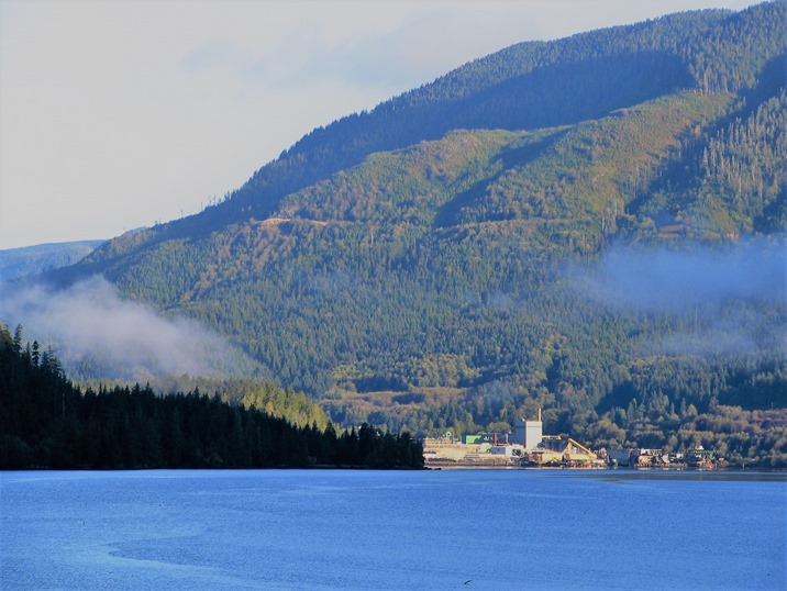Port Alice mill site on Neurotsos Inlet - bruce witzel photo