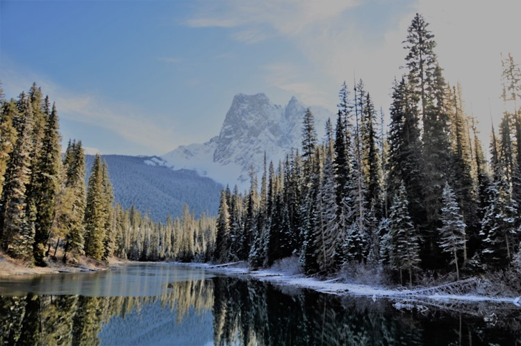 Emerald Lake View 4 Yoho National Park British Columbia Nov 10 -2018 - bruce witzel photo