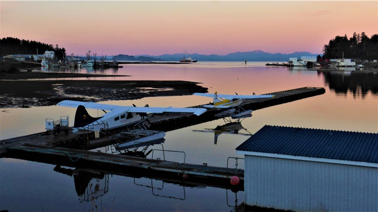 Port Hardy Harbour (2) Dec 6-2018 - bruce witzel photo