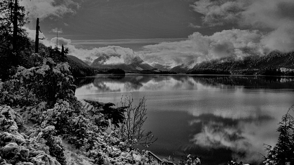 Lakeview panorama  b&w March 10-2017 - bruce witzel photo