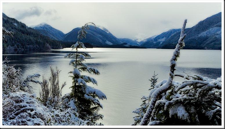 Snow at Victoria Lake, BC- Feb.16, 2019 - bruce witzel photo