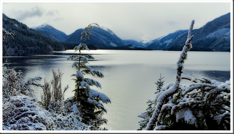 Snow at Victoria Lake, BC- Feb.16, 2019 - bruce witzel photo