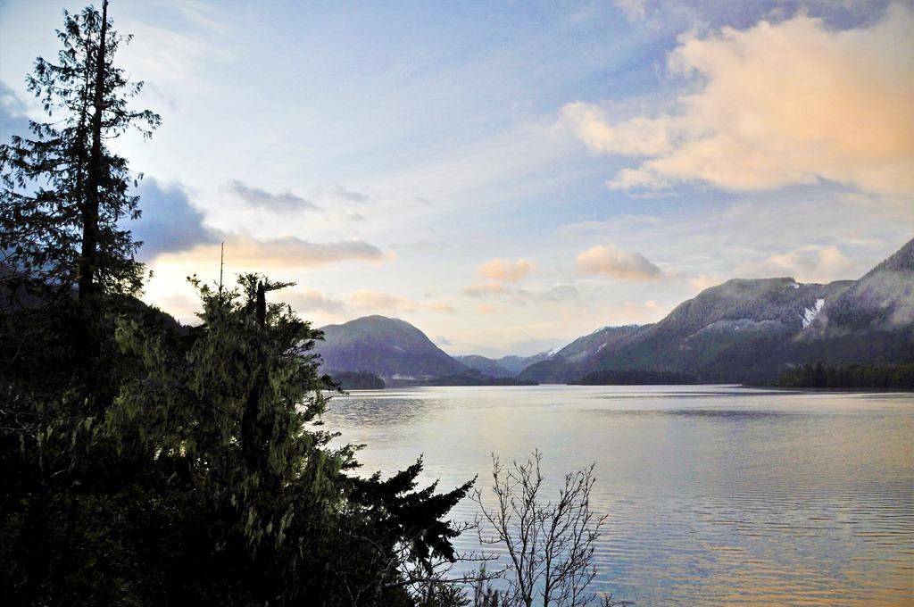 Lake view morning 2020-03-04 bruce witzel photo