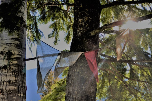 Prayer flags 2017-02-26 bruce witzel photo