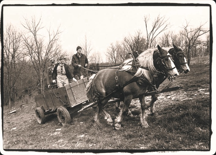 Wendell Berry and friends with hirse team- photographer unknown